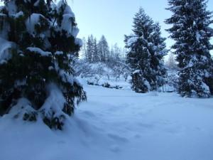 campionato-sci-mondovi-2011-2012-lions-montagna-pistoiese-009