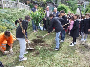 piantiamo-un-albero-2011-2012-lions-abetone-montagna-pistoiese-009